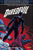 Couverture 100% Marvel : Daredevil #22